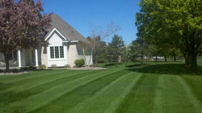 Lawn mowing Woodbury, MN