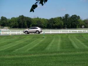 Weekly lawn mowing for Oakdale MN